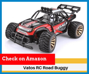 Vatos-RC-Road-Buggy