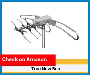 Tree-New-Bee